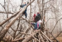 Outdoor Classrooms / Articles and success stories:  Schools that have implemented nature-based learning. Education, EcoLiteracy, Nature Connections, Healthy Kids