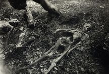 Sally Mann Body Fram