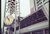 2015.02.22 / 『堂島孝平 活動20周年記念公演 オールスター大感謝祭!』東京・中野サンプラザ