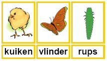 Lente woordkaarten