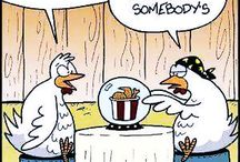 Poultry Humor / Poultry related cartoons and humor