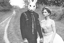 Rabbit and Rabbish