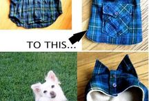 DiY dog clothes