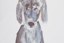 Illustrations. Dogs