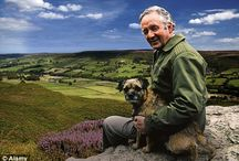 James Herriot and the Dales / All things 'All creatures great and small' Alf Wight's story.