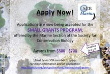 Marine Research Funding / Opportunities to learn about funding opportunities for marine research, including SCBMarine's Small Grants Program
