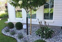 Garten ☀️☀️