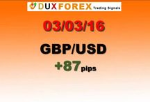 Daily Forex Profits Performance 03/03/16 - Dux Forex