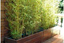 Bac à bambou