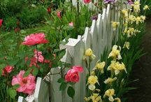 Schöne Gartenzaun