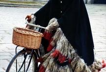 Bike and skirts