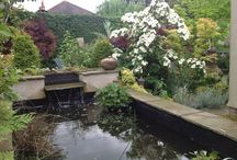 Gardens / Water and planting designs
