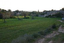 Eventi di Pasquetta in Puglia / State pensando a cosa fare domani per Pasquetta? In #Puglia abbiamo tante proposte scopritele nel nostro board.
