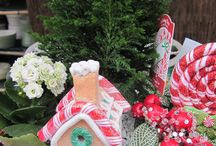 Fairy Gardens - Christmas Themed / Make a fairy garden in a container just for Christmas or add some holiday touches to your existing miniature garden.   I have a web page about these: http://allainchristmas.hubpages.com/hub/christmas-fairy-garden