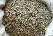 Newest Green Coffee Beans / Latest green coffee beans we have added to our web site. check out http://homeroastcoffee.com/