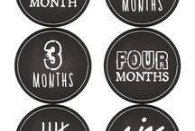 Stickers 12 Month Free
