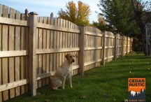Fences Great For Small Dogs