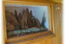 Tunel pro pozorování brouků / Tunel tvoří 4 akvária, která slouží jako pozorovatelna brouků pro předškolní děti.
