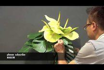 virágkötészet filmek