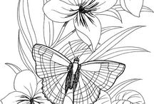 coloring pages / by Joyce Wilson
