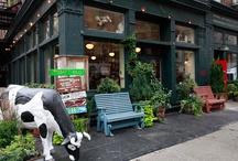 New York Kid Friendly Restaurants & Eateries