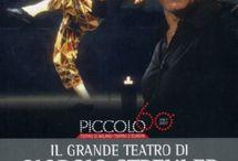 In Scena (Teatro & Teatri) / Lo spettacolo dal vivo