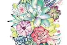 Rachel Reinert Coloring Books