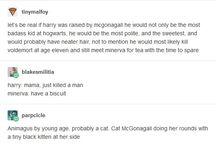 Harry Potter!!!!
