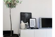 PLANTEN/PLANTS / Give your interior the energy of plants!