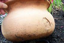 Tuinieren / Op een boerenerf
