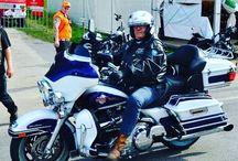 Harleysite #harley #harleydavidson #harleysite #eglide #harleyrider