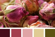 Colourways for Art