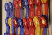 Equestrian / Ribbon rack