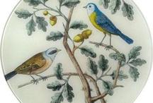 kuş ve pano