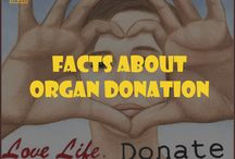 Facts about organ donation and transplantation / by Cindy, A Southern Gal