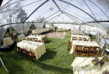 Wedding Tents / by Cicely Rocha-Miller