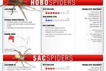 Spidersbits