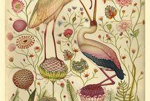 birds / by Jenny Mendes