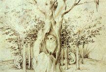 Owls / Owls Owly Owls