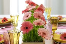 TABLESCAPES / by Sandra Knight