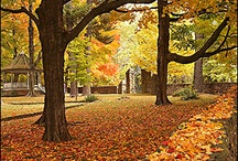 Fayetteville in the fall