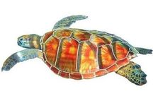 Turtles / Turtles have been on the earth for more than 200 million years. They evolved before mammals, birds, crocodiles, snakes, and  lizards.