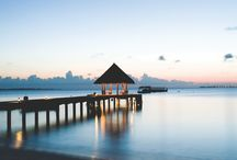 Coco Palm Dhuni Kolhu, Maldives / On the private island Dhuni Kolhu in the Baa Atoll, lays Coco Palm Dhuni Kolhu, the ultimate hideaway in the Maldives.