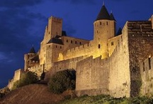CATHARS ~ DEMORI !! / by Susan Miller