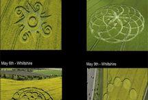 Crop Cicles