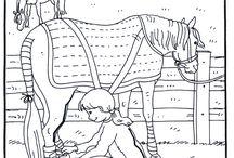 Educational themes-The farm