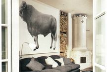 Photo of animals on the wall / Wall art