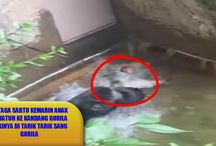 News Update / Berita Heboh, Viral Video, Trend Video Update,
