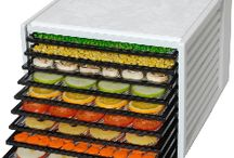 Dehydrator and Tray Dryers