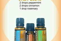 Back to School + Essential Oils